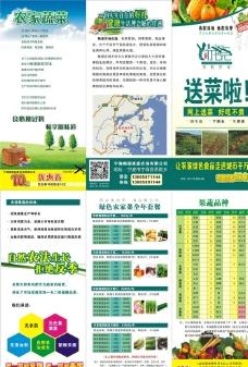 绿色蔬菜三折页图片