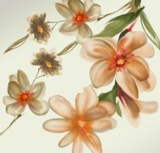 手绘花朵PSD图片