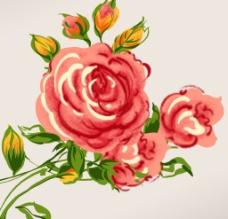 玫瑰花PSD图片
