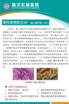 幽门螺杆菌展板图片