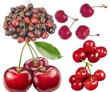 红樱桃素材图片