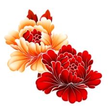 高清牡丹花图片