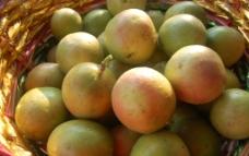 百香果 鸡蛋果 黄心水果图片
